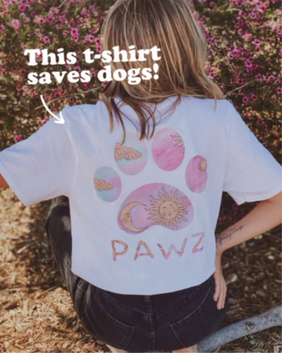 This t-shirt saves dogs!
